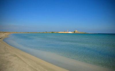 Visitare l'Oasi di Vendicari, scopri il paradiso del sud est della Sicilia